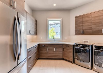Flying Horse Contemporary - Laundry Room